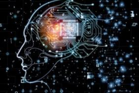 erkek beyni nasıl çalışıyor