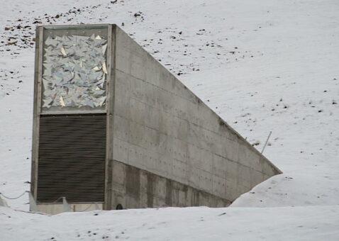1000 Yıl Kuzey Kutbunda Saklanacaklar