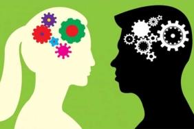 kadın beyni nasıl çalışır