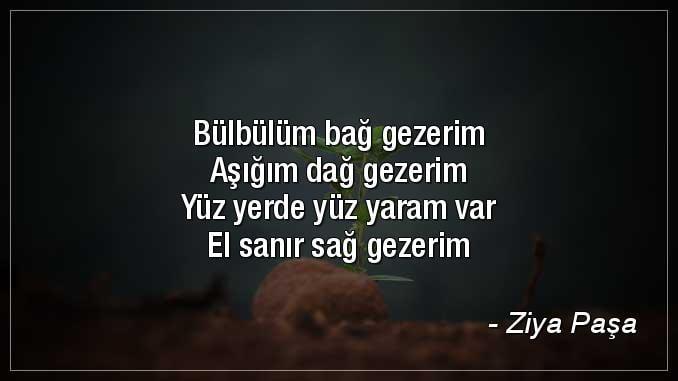 Ziya Paşa en güzel şiirleri