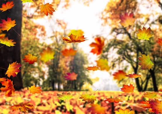 duygusal sonbahar şiirleri