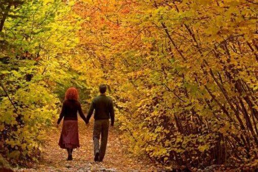 ünlü şairlerden sonbahar şiirleri