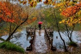 en güzel anlamlı ünlü sonbahar şiirleri