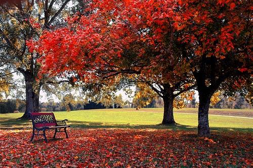 sonbahar ile i̇lgili şiirler