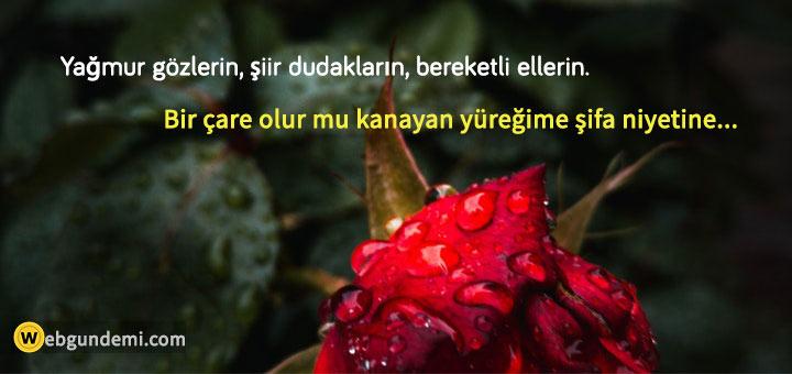 i̇çinde yağmur geçen sözler ve şiirler