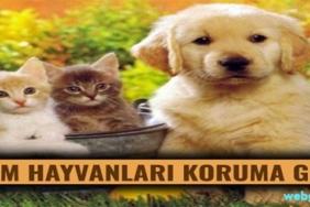 hayvanları koruma günü mesajları ve sözleri
